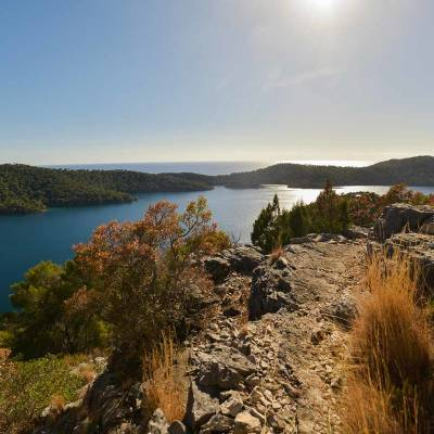 Morning on Mljet